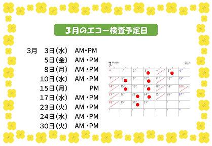 2021.3月のエコー検査予定日-1.jpg