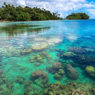 Tawali house reef.jpg