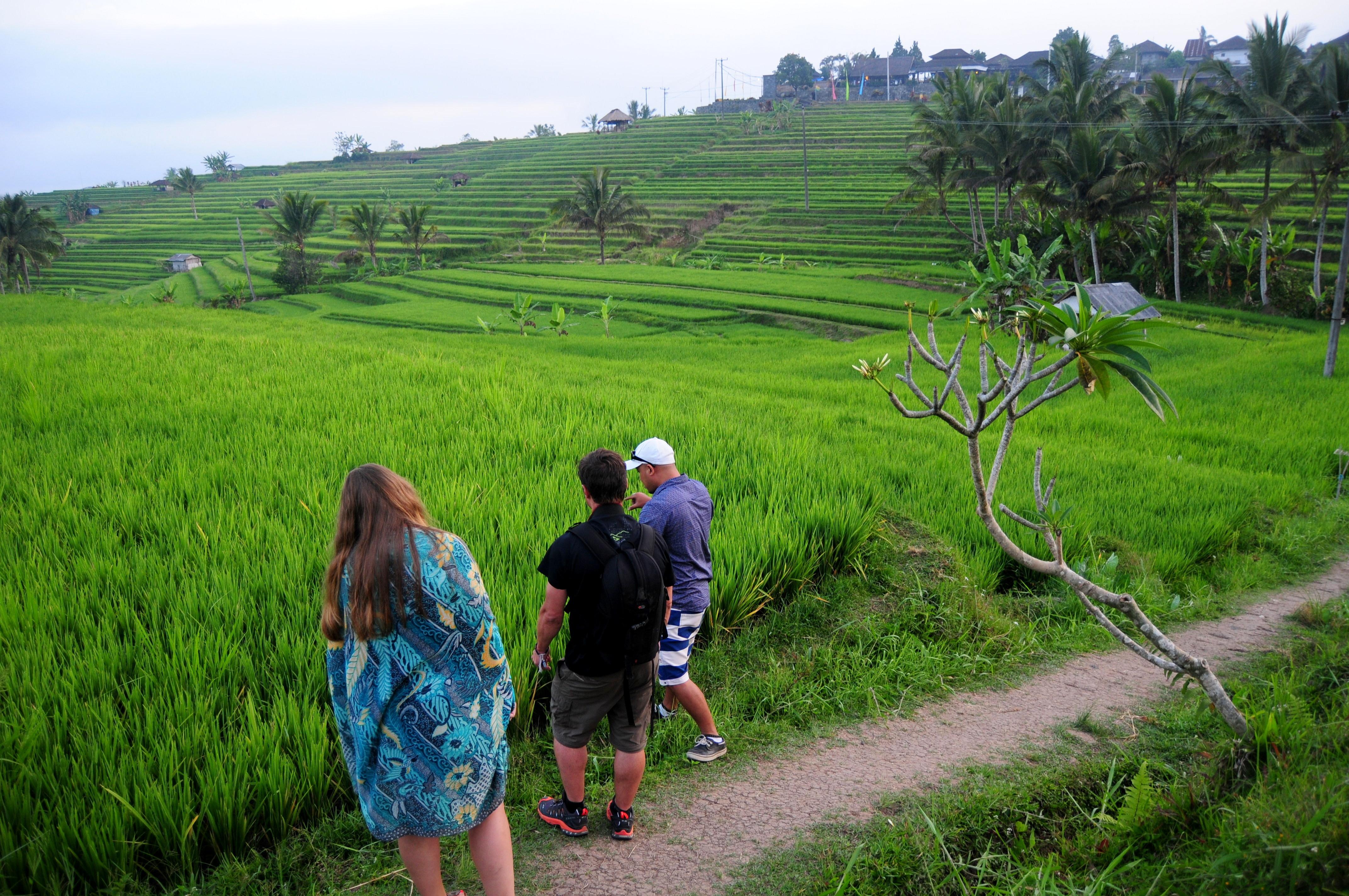 Touring Jatiluwih