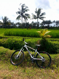 Famous cycling route behind villa