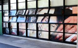 Window Graphics Printed Vinyl