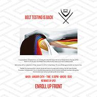 jan belt testing for ig.jpg