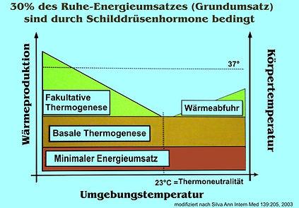 Thermoregulation_2.jpg