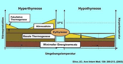 Hyper-Hypo_Thermo.jpg