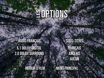 BARBARES_Menu_Options.jpg
