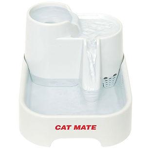 cat water dish