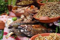 Cocina  Lacustre