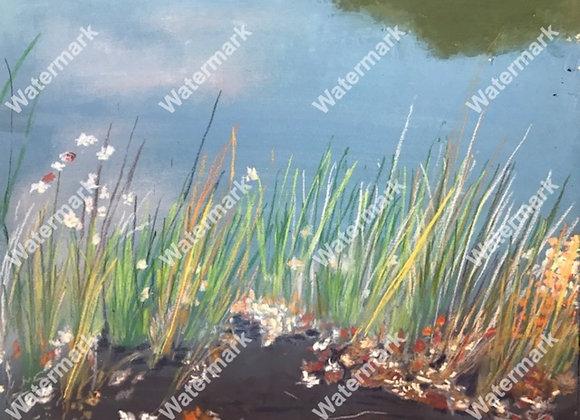 Autumn Salt Grass Print