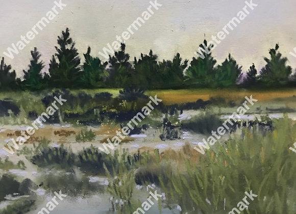 Wetlands I Print
