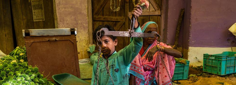India prospectie-147.jpg
