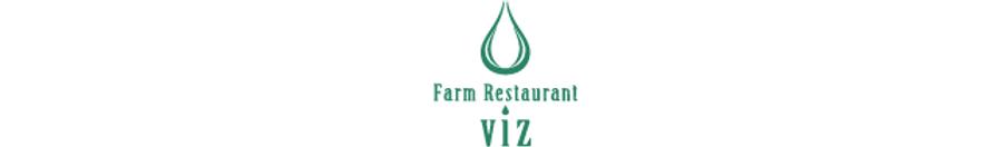 logo_viz.png
