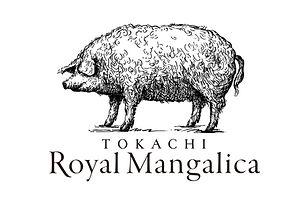 logo_A.jpg