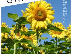 十勝ヒルズの夏まつり「SUMMER GARDEN2021」開催