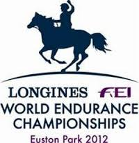 world endurance