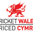 CricketWales-Logo-web.jpg
