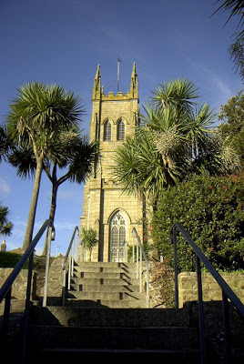 Cornish Palms in Cornwall,  County, England