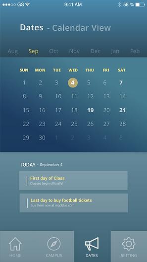 date- calendar view.png