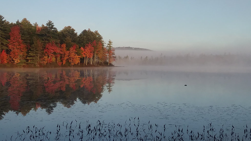 Fall at Gile Pond, Sutton, NH