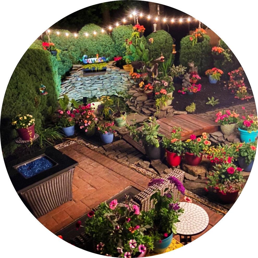 backyard circle.jpg
