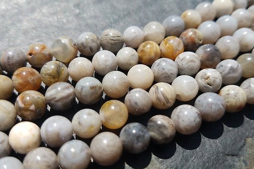 6 mm Grey Bamboo Leaf Agate