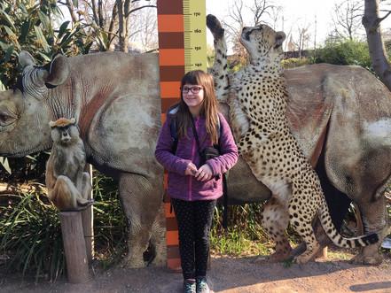 Wandertag in den Zoo