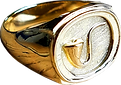 gold pipe ring no back.png