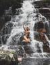 Cachoeira Arcanjos na Chapada dos Veadeiros
