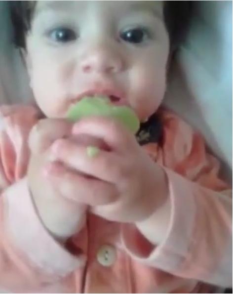 Introdução alimentar para bebês!