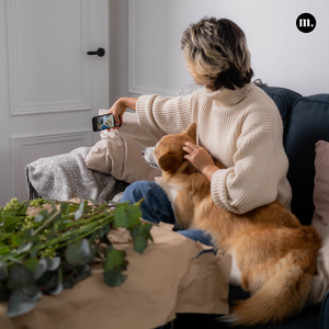 Man's Best Friend or the Internet's New Fashion Exploitation?