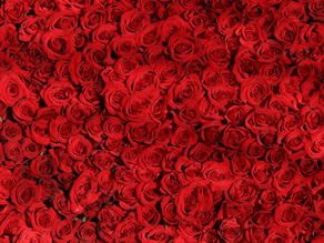What Is Red, Long, And Invisible? The Virtual Red Carpet