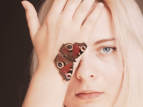 The Butterfly Effect: Biomimicry & Sustainability