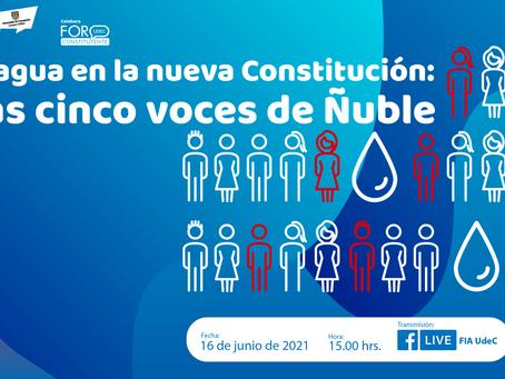 Conversatorio web sobre el agua reunirá a los constituyentes de Ñuble