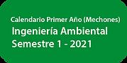 CalendarioIAMB Primer Año2021.png