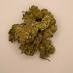 OZ-Girl Scout Cookies