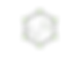 Logo Hexagon .png