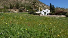 El Molino del Conde: The gardens in April