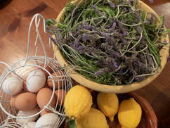 El Molino del Conde: From the garden - eggs, lemons, lavender