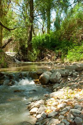 El Molino del Conde: Stream in the gardens