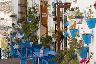 Iznajar bars and restaurants.jpg