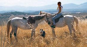 horse riding cortijo las minas.jpg