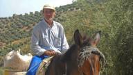 Village life - rural Andalucía, Spain