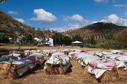 Andalucian Wedding at El Molino del Conde