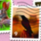 Card 3 Puzz 4.jpg