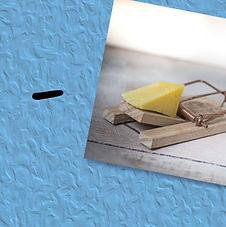 Card 5D.jpg