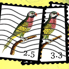 Card 3C.jpg