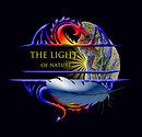 The Light Revised #1.jpg