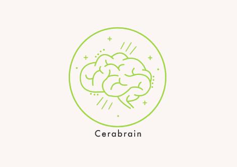 Cerabrain