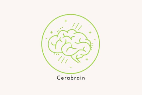 COMCOMBO MEGABRAIN + CERAGEM 8 SESIONE