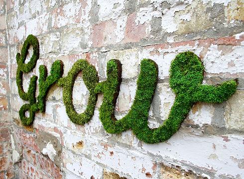 el-jardin-restauracion-organica-w_grow_2