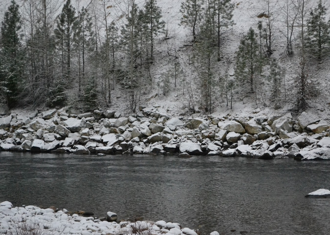 River view winter